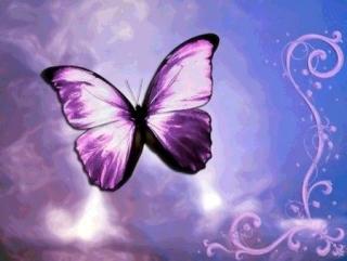 ¿Qué piensas que sucederá en el 2012? 20090123165155-mariposa-de-amor